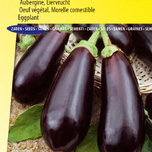 Aubergine, Morelle comestible Black Beauty
