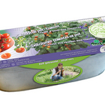 Kit Tomate Siderno F1 (pot)