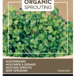 Organic Sprouting Germes de Moutarde - Buzzy