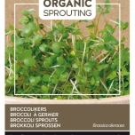 Organic Sprouting Germes de Brocoli - Buzzy