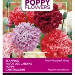 Poppies of the world – Pavot Somnif. 'Paeoniflorum' Dbl Var.