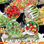 Collection 4 en 1 salades