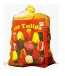 Tulipes Triumph Mix (XL)