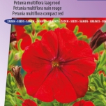 Petunia Multiflora Fire Chief Rouge